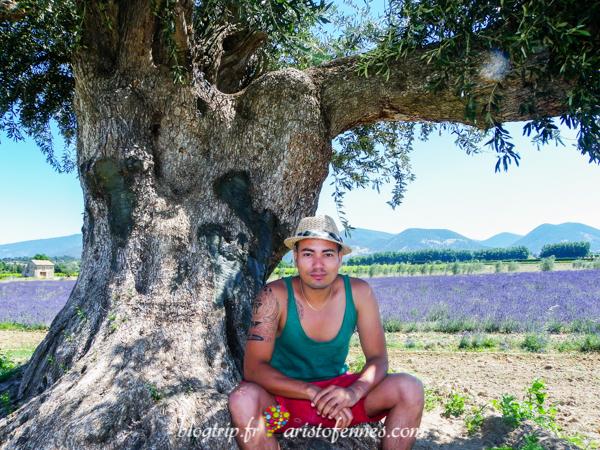 Blog de viajes de Aristofennes