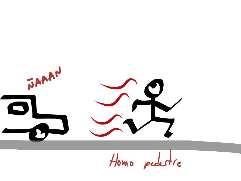 homo pedestre