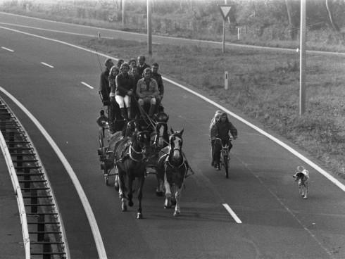 holandeses a caballo
