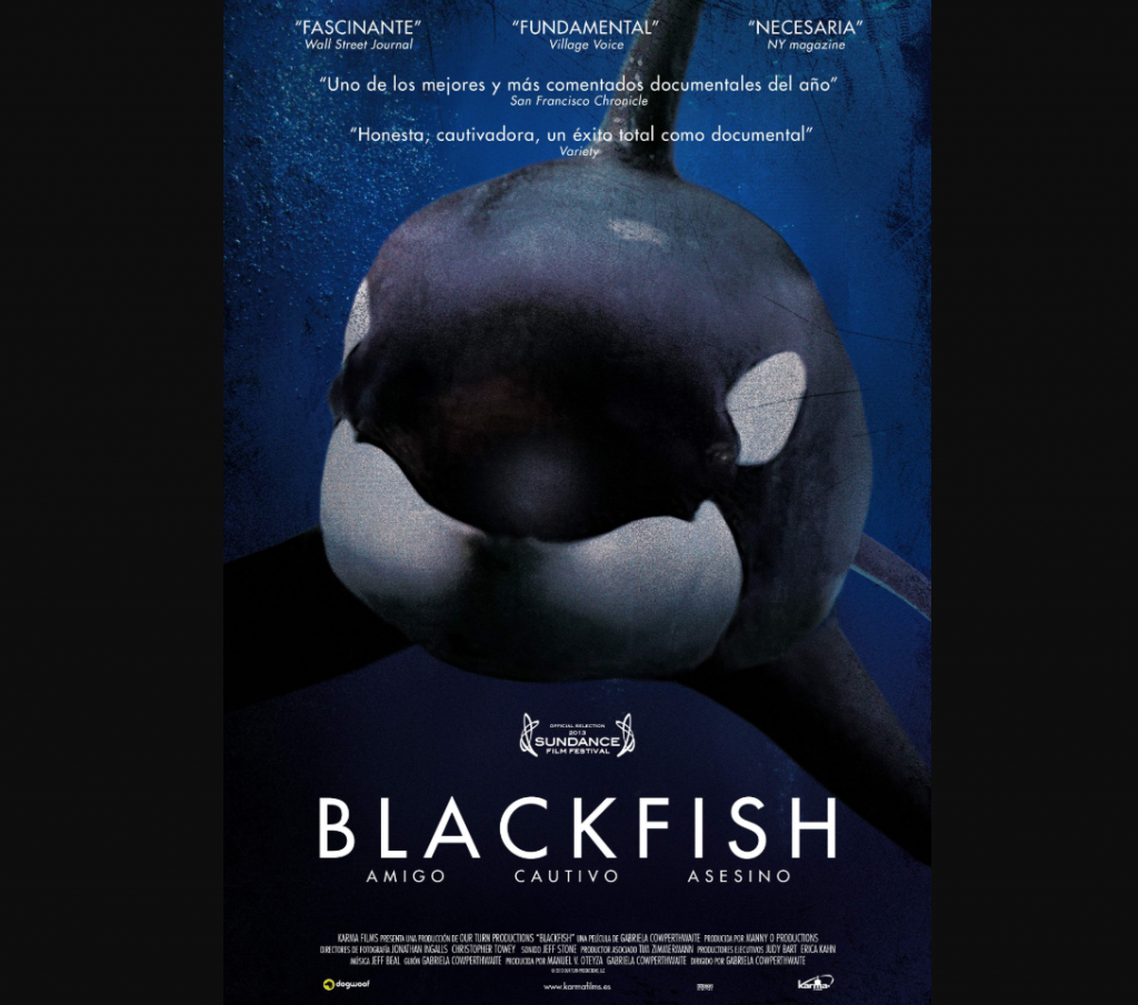 Imagen: Documental Blackfish. Director: Gabriela Cowperthwaite. Productora: CNN Films. Distribución: Magnolia Pictures. Estudio: CNN Films/ Manny O. Productions