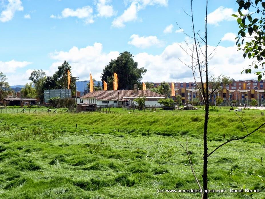 Construcción de apartamentos amenaza al Humedal La Conejera en Bogotá