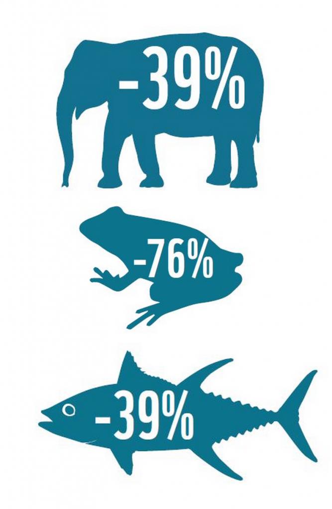 Reducción en la Población Animal del Mundo