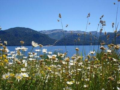 Villa Traful - Lago Traful 2
