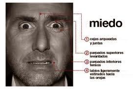 Microexpresiones del miedo