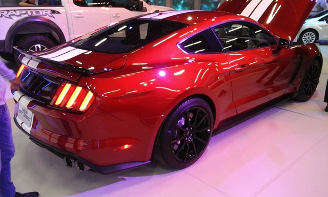 MUSTANG SHELBY 1