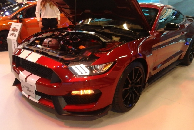 MUSTANG SHELBY 2