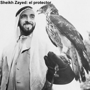 NEW ZAYED
