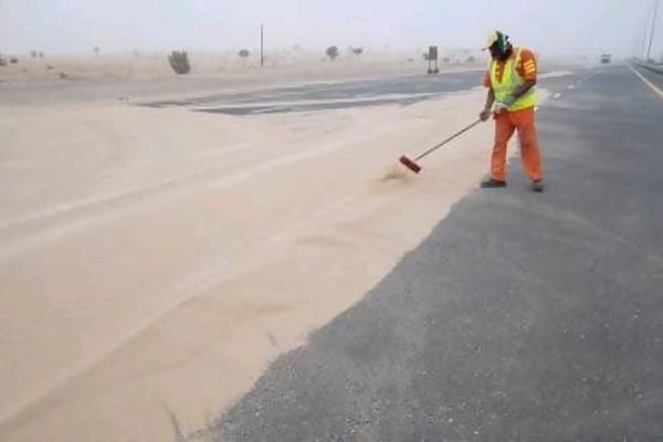 Escobitas del desierto: También recolectores de fábulas
