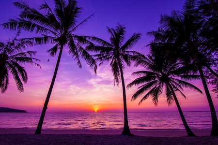 Atardecer con color púrpura.