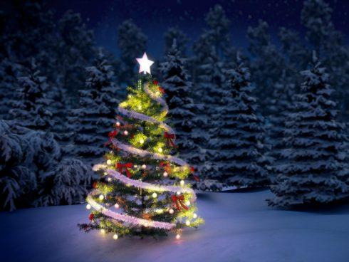 dulce-navidad-euroresidentes (1)