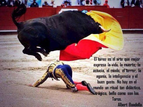 bullfighting twitter.jpg-large