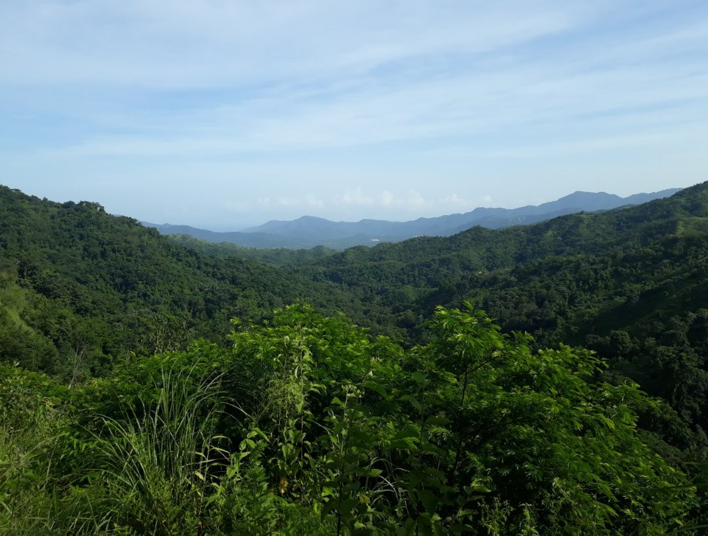Trekking around Paso del Mango, Masinga, near the city of Santa Marta, Colombia.