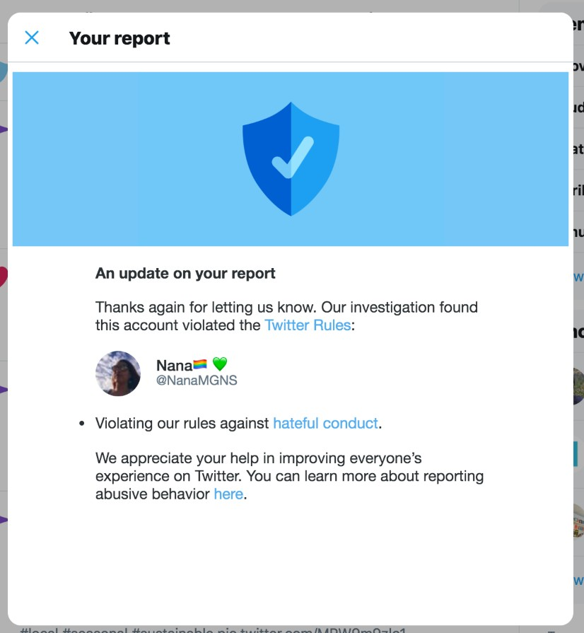 "A rare ""victory"" against the radical feminists! The Twitter report of the ""hateful conduct"" violation by @NanaMGNS."